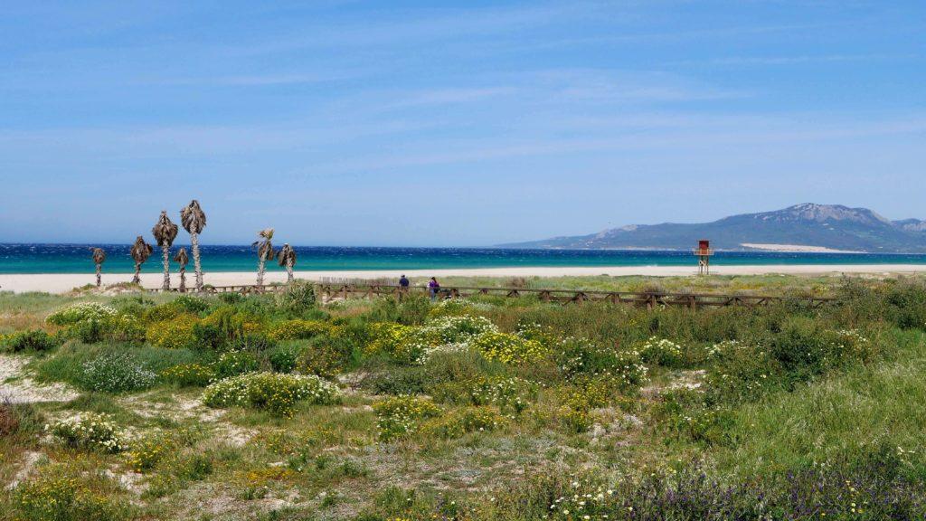 The beach in Tarifa