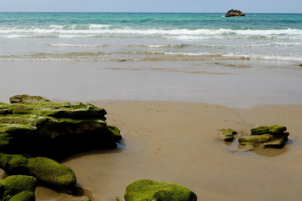 beach in Conil